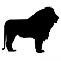Animal Kingdom Episode 001 – LION
