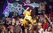 August 2013 ANIMAL PARTY