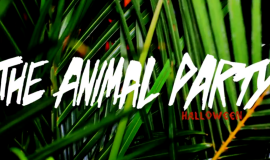 The Animal Party [NYC] Halloween 2014 Recap