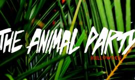 The Animal Party [NYC] Halloween 2014 Recap